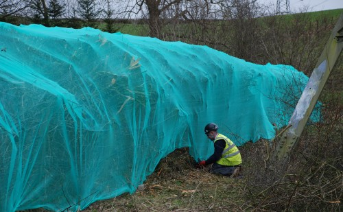 Hedgerow Netting